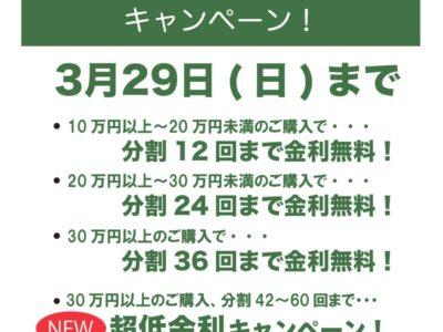 金利無料 & 超低金利キャンペーン継続!!【~3/29】