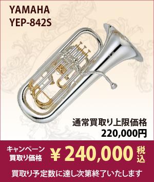 YEP842S