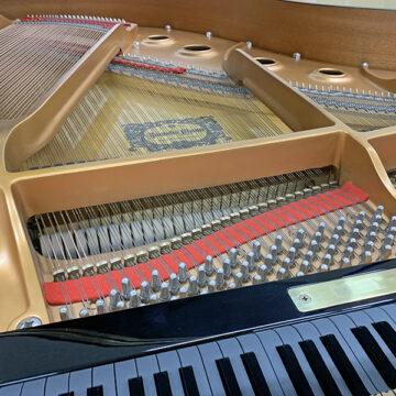 ヤマハグランドピアノC1L整備